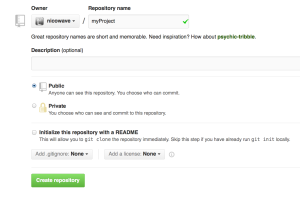Snapshot of what a new repository set-up looks like on github.com with your project name in the top central field.